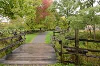 Pathway to Sacred Grove