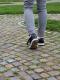 Germany: Cobblestone Path